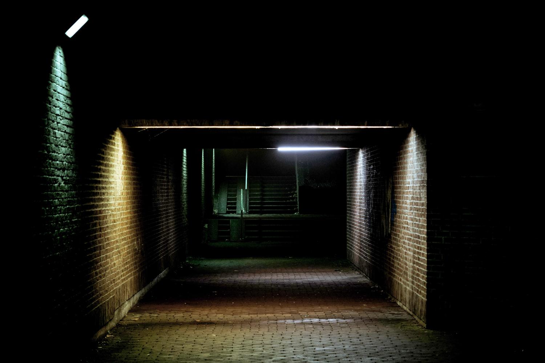 Nighttrail